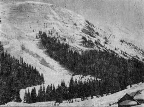 Лавинний конус у Чорногірському масиві
